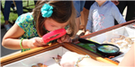 Little Girl Looking at Pinned Butterflies with a Magnifying Glass